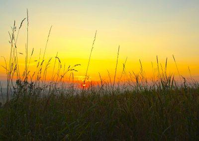 Sonnenaufgang-Aidlingen